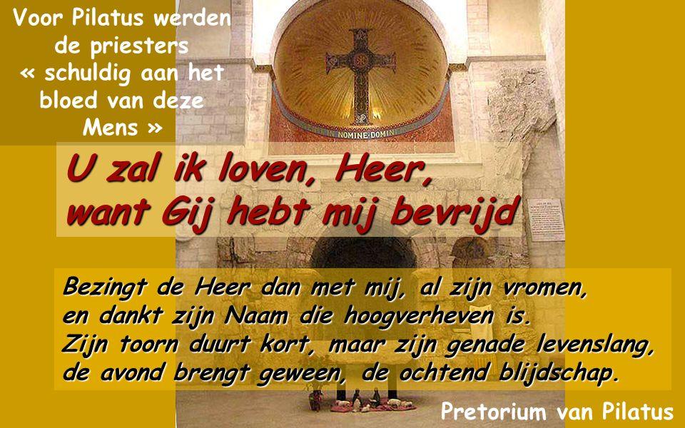 Psalm 30(29) U zal ik loven,Heer, want Gij hebt mij bevrijd U zal ik loven,Heer, want Gij hebt mij bevrijd U zal ik loven, Heer, want Gij hebt mij bevrijd, Gij hebt mijn vijanden niet laten zegevieren.