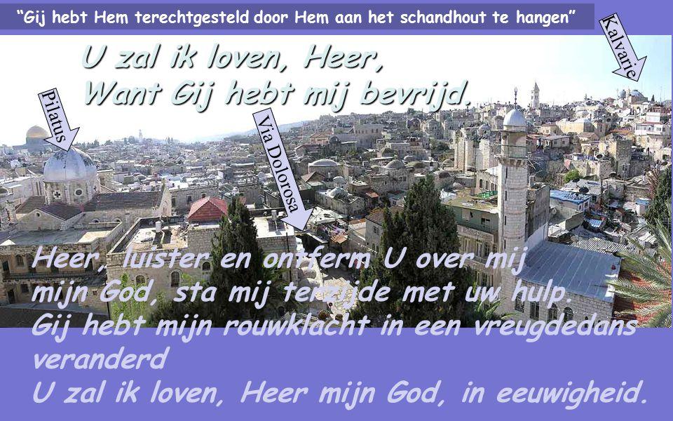 U zal ik loven, Heer, want Gij hebt mij bevrijd Bezingt de Heer dan met mij, al zijn vromen, en dankt zijn Naam die hoogverheven is.