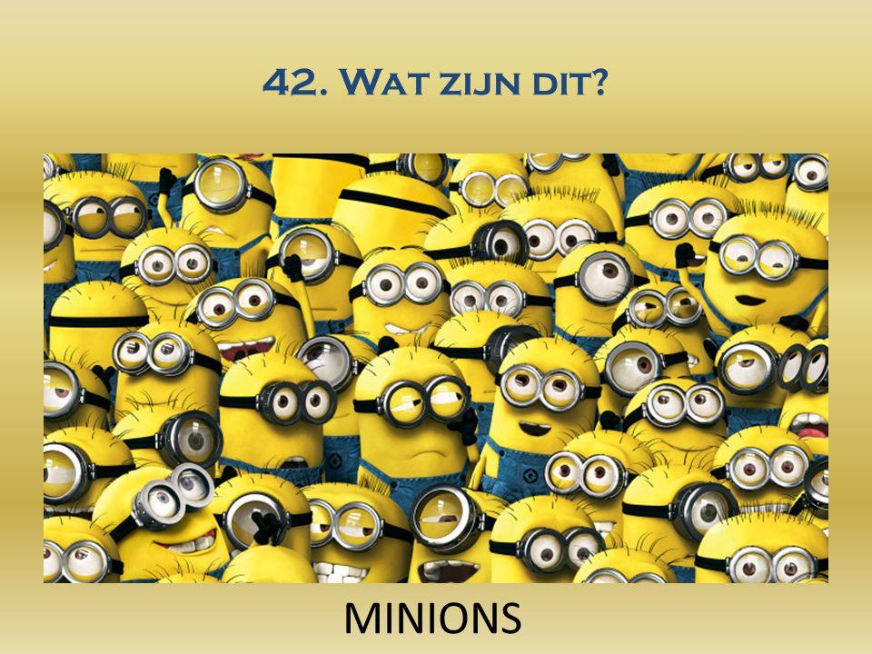 42. Wat zijn dit MINIONS