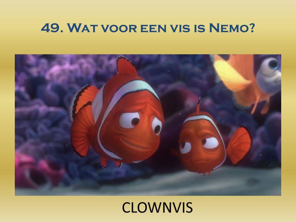 49. Wat voor een vis is Nemo? CLOWNVIS