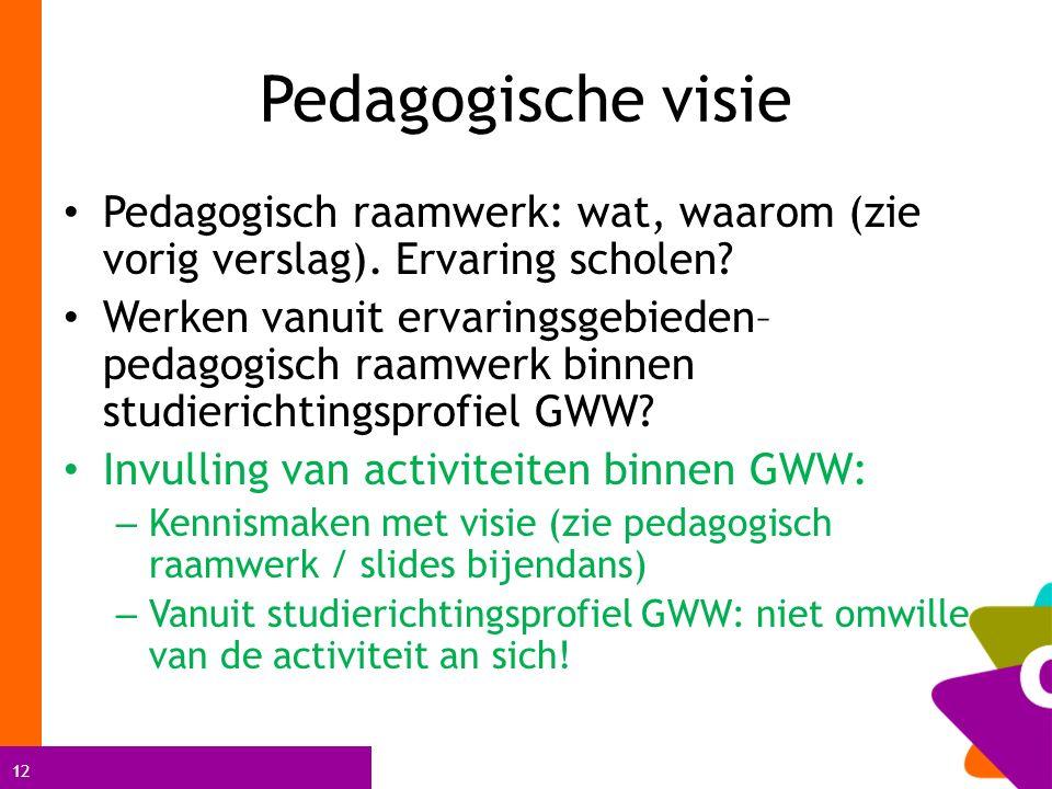 12 Pedagogische visie Pedagogisch raamwerk: wat, waarom (zie vorig verslag).