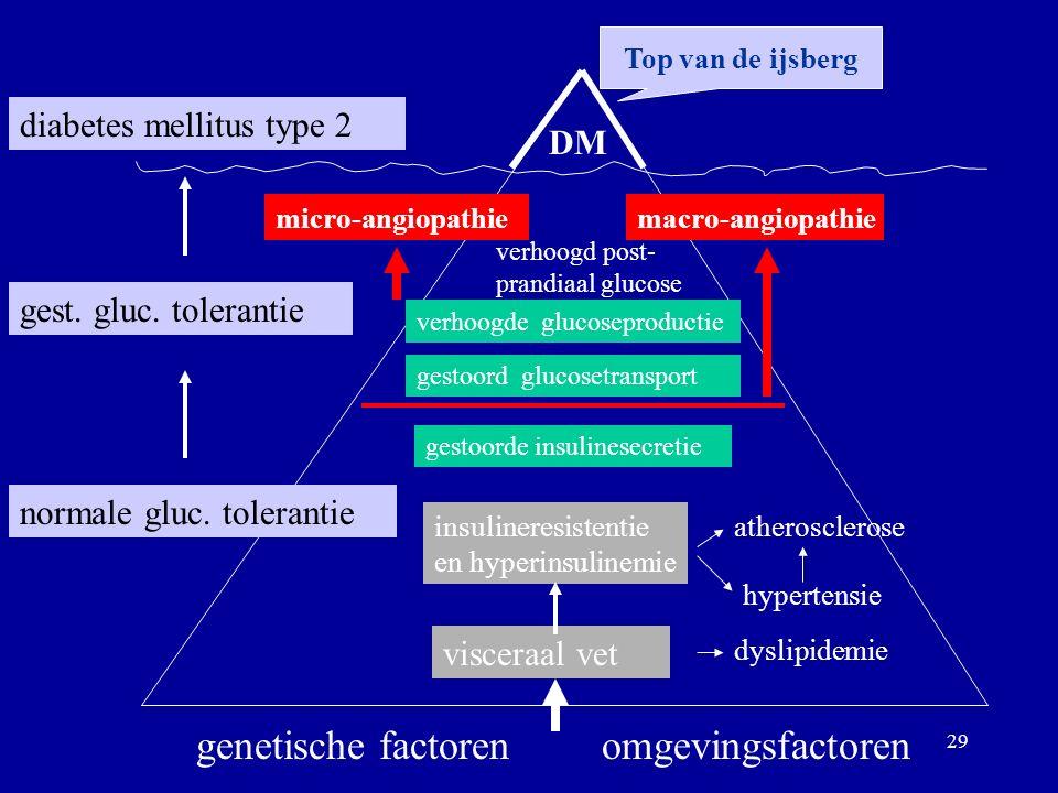 29 DM diabetes mellitus type 2 gest. gluc. tolerantie normale gluc.