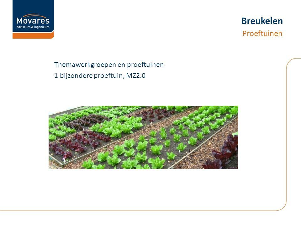 Breukelen Themawerkgroepen en proeftuinen 1 bijzondere proeftuin, MZ2.0 Proeftuinen