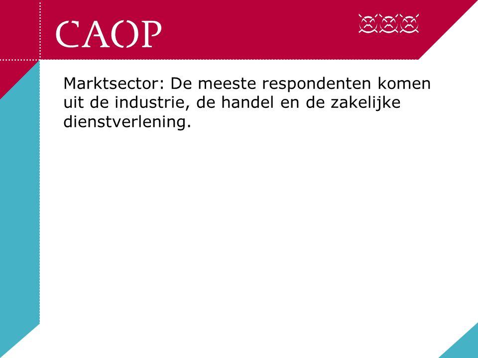 Marktsector: De meeste respondenten komen uit de industrie, de handel en de zakelijke dienstverlening.