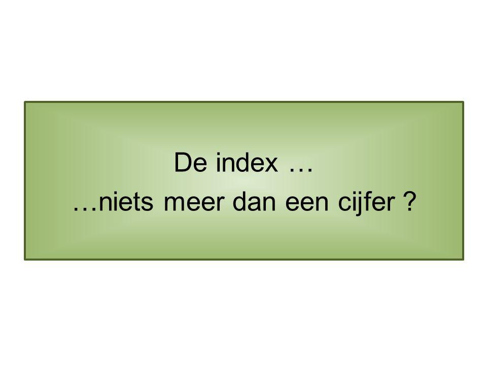 De index … …niets meer dan een cijfer
