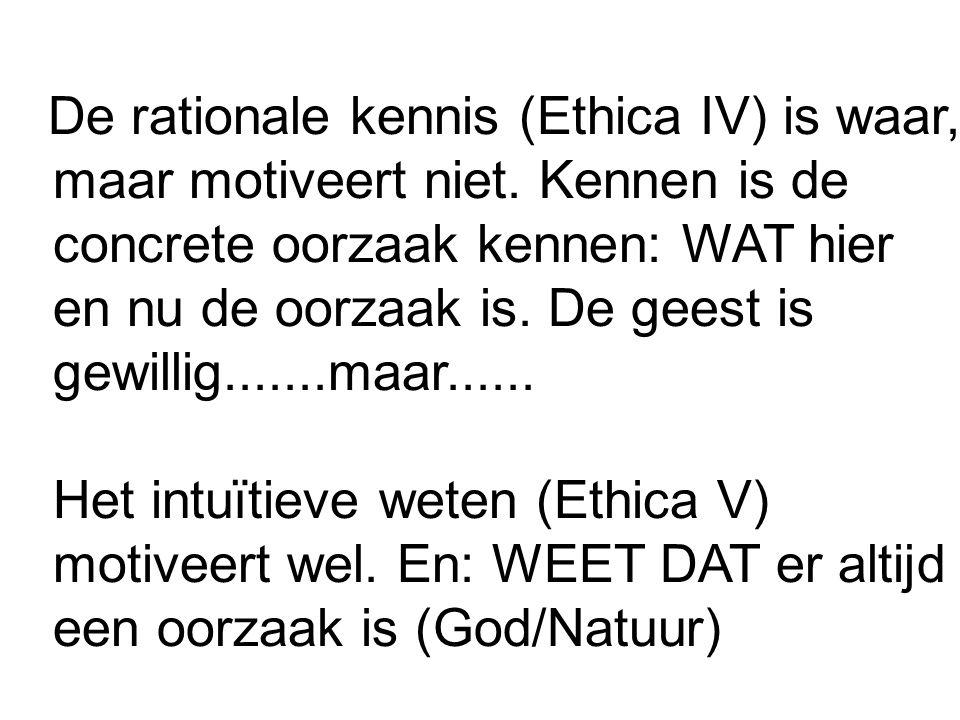 De rationale kennis (Ethica IV) is waar, maar motiveert niet.
