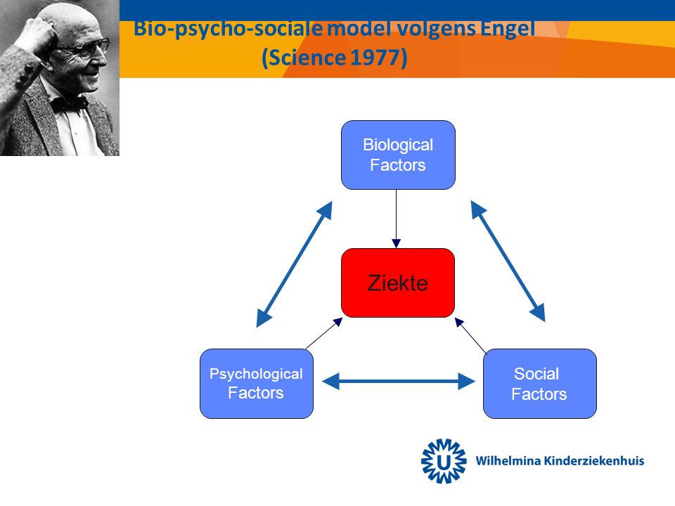 Bio-psycho-sociale model volgens Engel (Science 1977) Psychological Factors Biological Factors Social Factors Ziekte