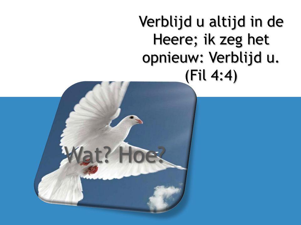 Wat? Hoe? Verblijd u altijd in de Heere; ik zeg het opnieuw: Verblijd u. (Fil 4:4)
