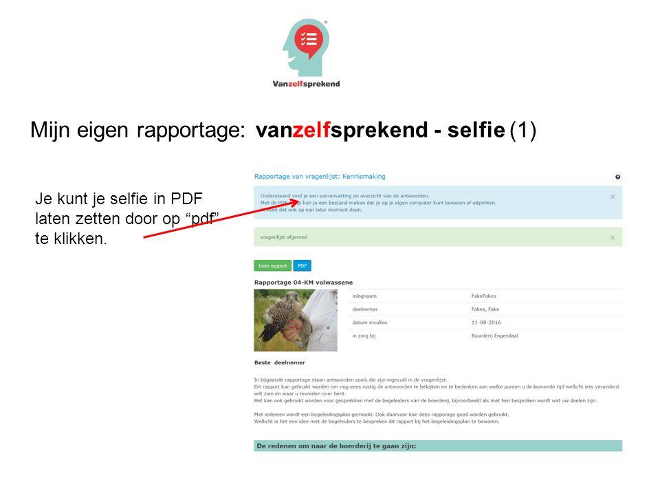 Mijn eigen rapportage: vanzelfsprekend - selfie (1) Je kunt je selfie in PDF laten zetten door op pdf te klikken.