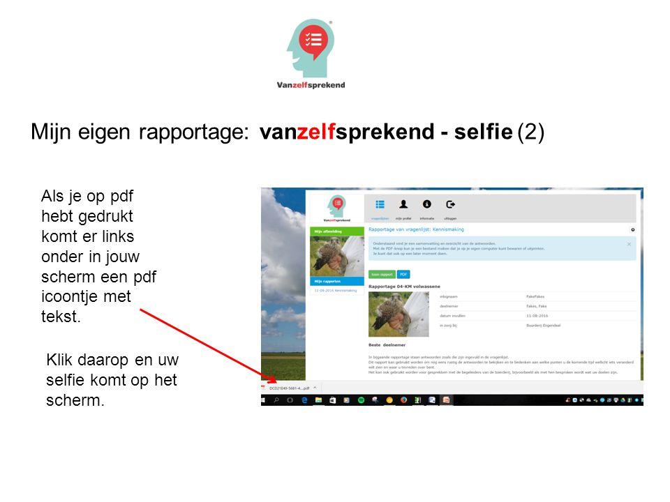 Mijn eigen rapportage: vanzelfsprekend - selfie (2) Als je op pdf hebt gedrukt komt er links onder in jouw scherm een pdf icoontje met tekst.