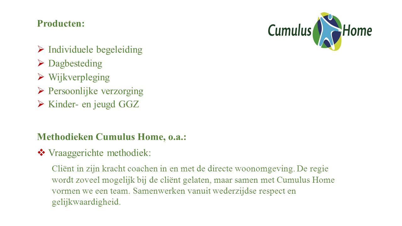 Producten:  Individuele begeleiding  Dagbesteding  Wijkverpleging  Persoonlijke verzorging  Kinder- en jeugd GGZ Methodieken Cumulus Home, o.a.: