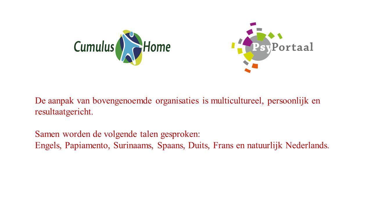 De aanpak van bovengenoemde organisaties is multicultureel, persoonlijk en resultaatgericht.