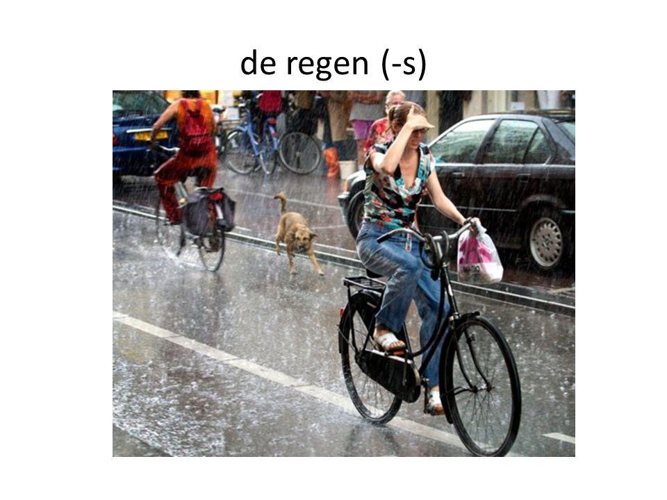 de regen (-s)