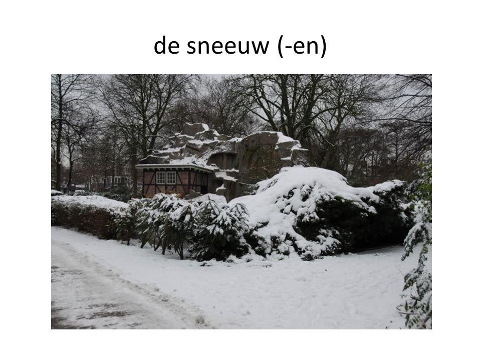 de sneeuw (-en)