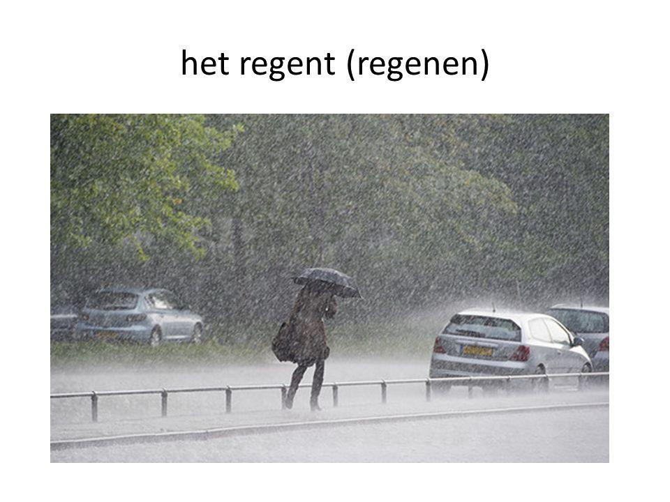 het regent (regenen)