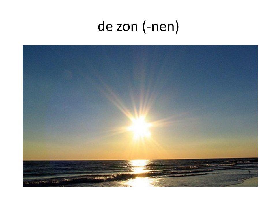 de zon (-nen)