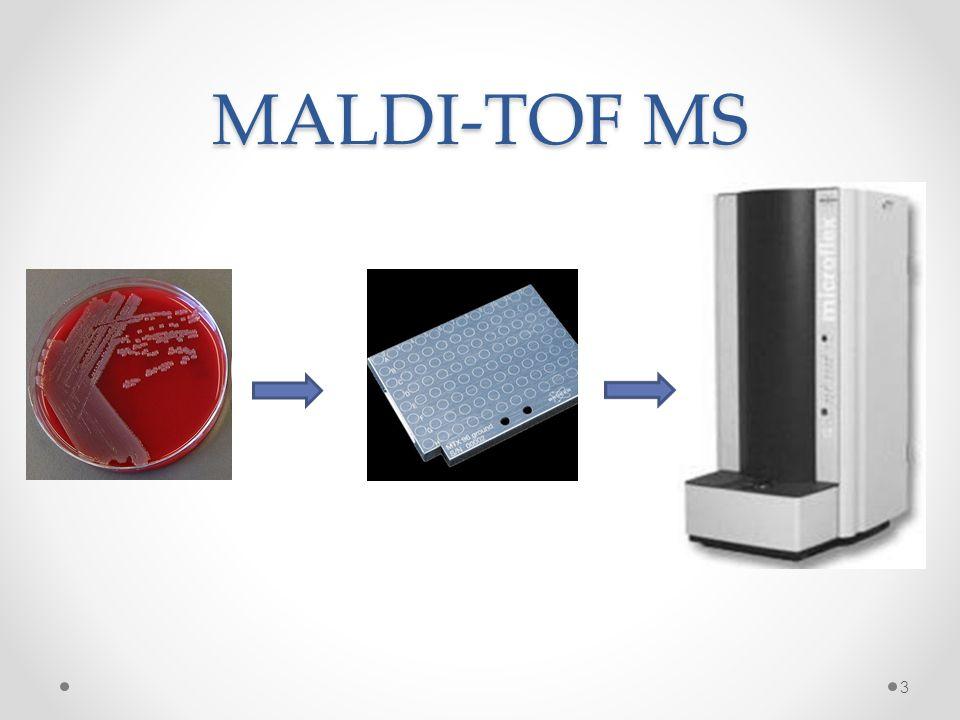 G- staven: 5% verkeerde ID Shigella o Geen massaspectra in database o Geen onderscheid met massaspectrum E.
