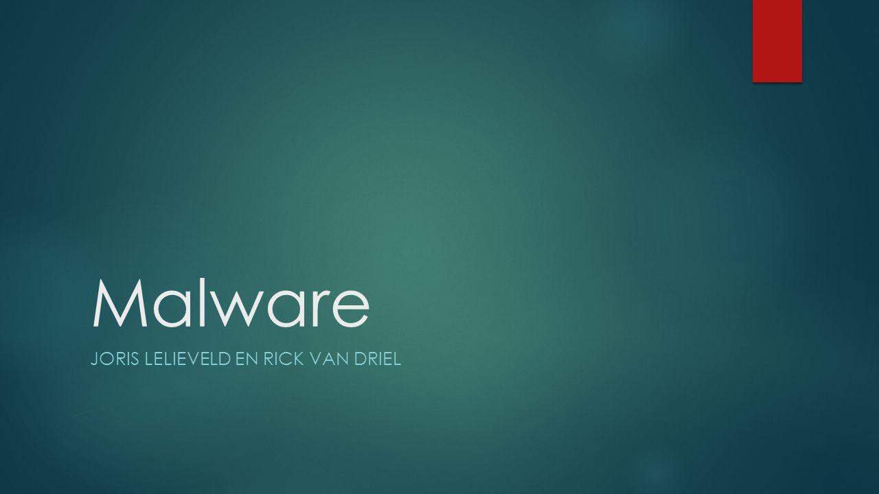 Malware JORIS LELIEVELD EN RICK VAN DRIEL