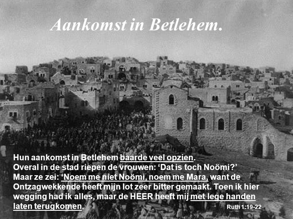 Hun aankomst in Betlehem baarde veel opzien. Overal in de stad riepen de vrouwen: 'Dat is toch Noömi?' Maar ze zei: 'Noem me niet Noömi, noem me Mara,