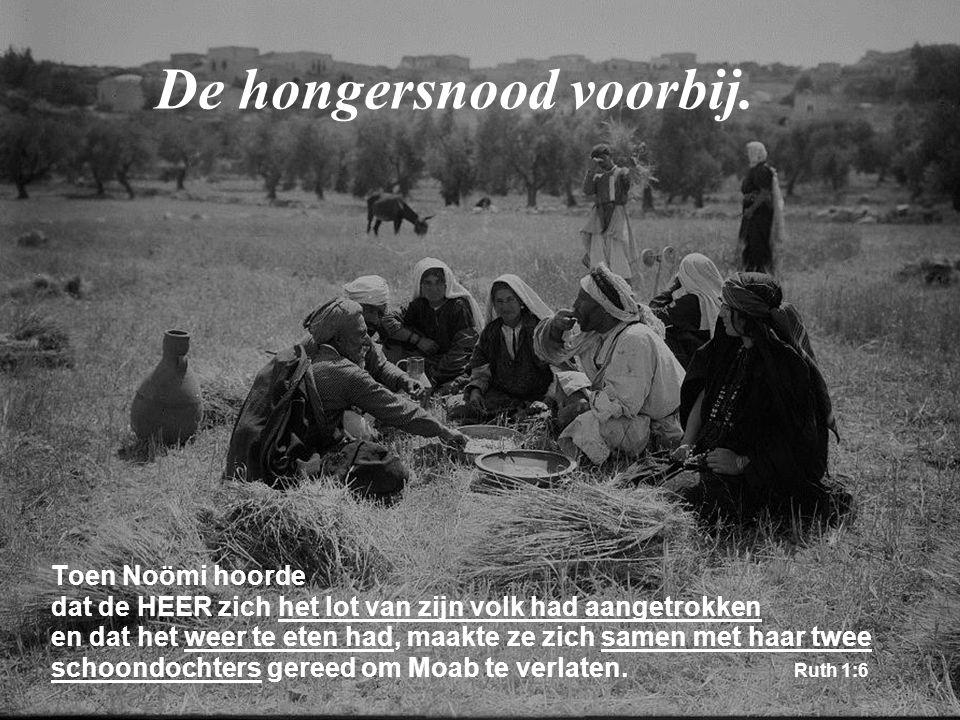 Toen Noömi hoorde dat de HEER zich het lot van zijn volk had aangetrokken en dat het weer te eten had, maakte ze zich samen met haar twee schoondochte