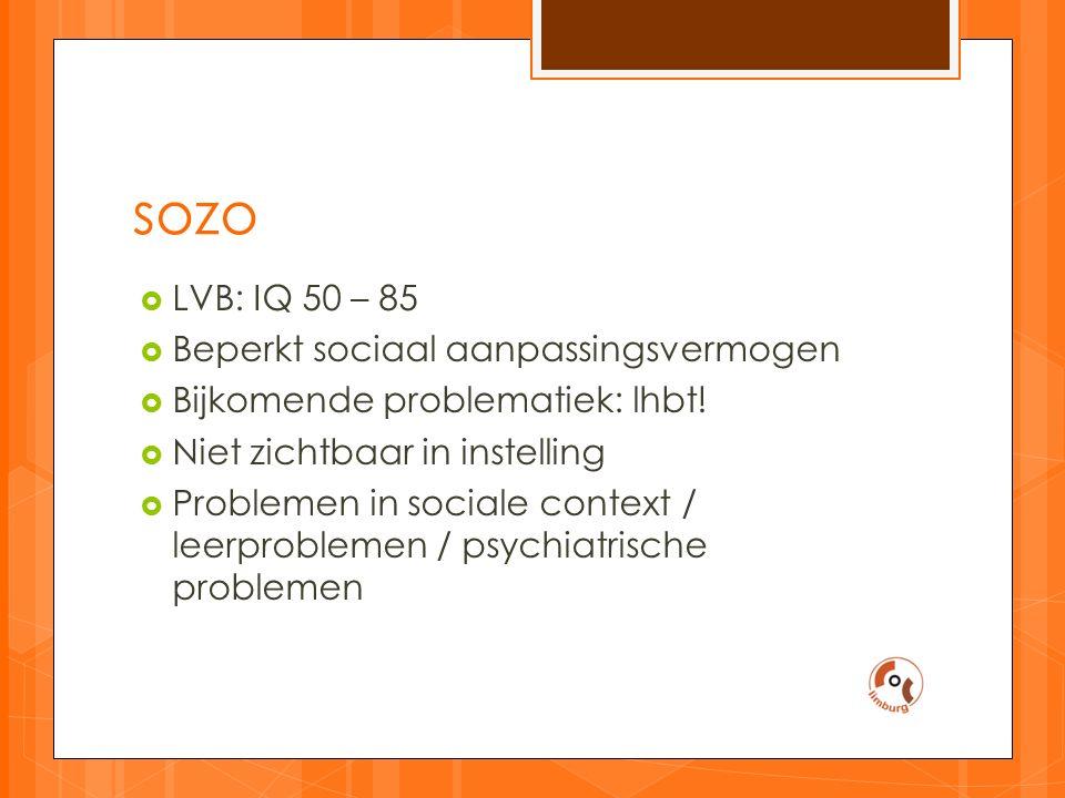 sozo  LVB: IQ 50 – 85  Beperkt sociaal aanpassingsvermogen  Bijkomende problematiek: lhbt.