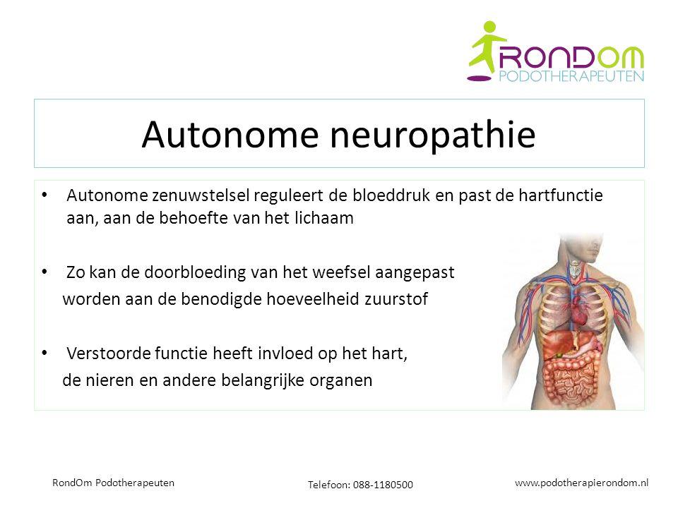 www.podotherapierondom.nl Telefoon: 088-1180500 RondOm Podotherapeuten Autonome neuropathie Autonome zenuwstelsel reguleert de bloeddruk en past de hartfunctie aan, aan de behoefte van het lichaam Zo kan de doorbloeding van het weefsel aangepast worden aan de benodigde hoeveelheid zuurstof Verstoorde functie heeft invloed op het hart, de nieren en andere belangrijke organen