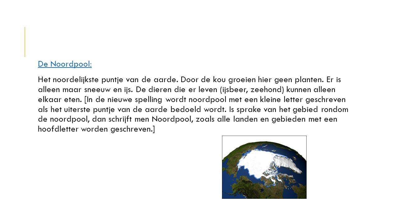 De Noordpool: Het noordelijkste puntje van de aarde. Door de kou groeien hier geen planten. Er is alleen maar sneeuw en ijs. De dieren die er leven (i