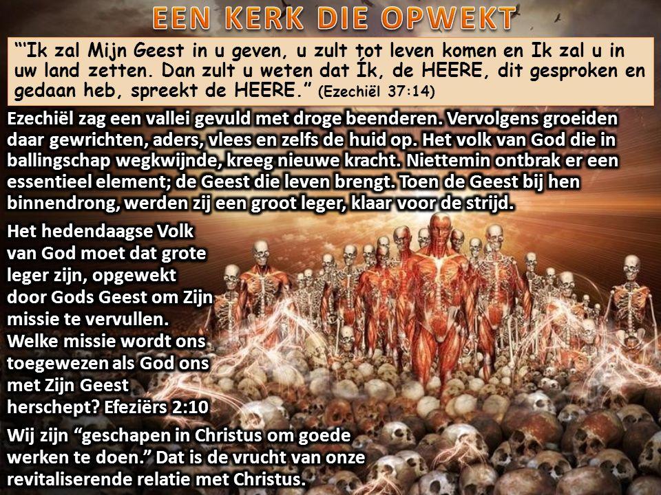 'Ik zal Mijn Geest in u geven, u zult tot leven komen en Ik zal u in uw land zetten.