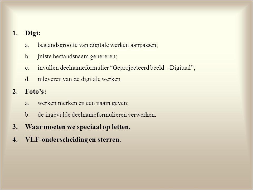 1.Digi: a.bestandsgrootte van digitale werken aanpassen; b.juiste bestandsnaam genereren; c.invullen deelnameformulier Geprojecteerd beeld – Digitaal ; d.inleveren van de digitale werken 2.Foto's: a.werken merken en een naam geven; b.de ingevulde deelnameformulieren verwerken.