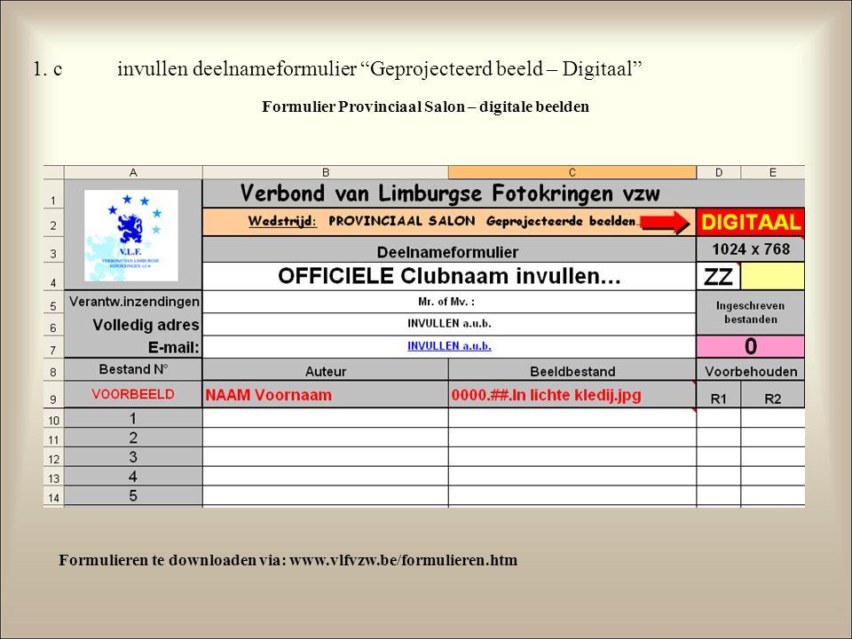 """1. cinvullen deelnameformulier """"Geprojecteerd beeld – Digitaal"""" Formulier Provinciaal Salon – digitale beelden Formulieren te downloaden via: www.vlfv"""