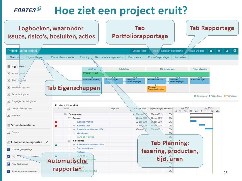 Hoe ziet een project eruit? 25 Tab Planning: fasering, producten, tijd, uren Logboeken, waaronder issues, risico's, besluiten, acties Tab Eigenschappe