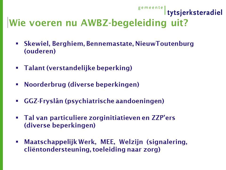 Wie voeren nu AWBZ-begeleiding uit.