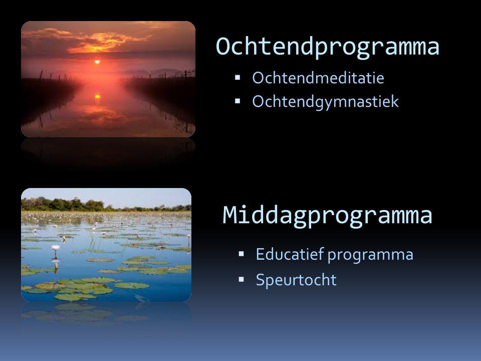 Ochtendprogramma  Ochtendmeditatie  Ochtendgymnastiek Middagprogramma  Educatief programma  Speurtocht