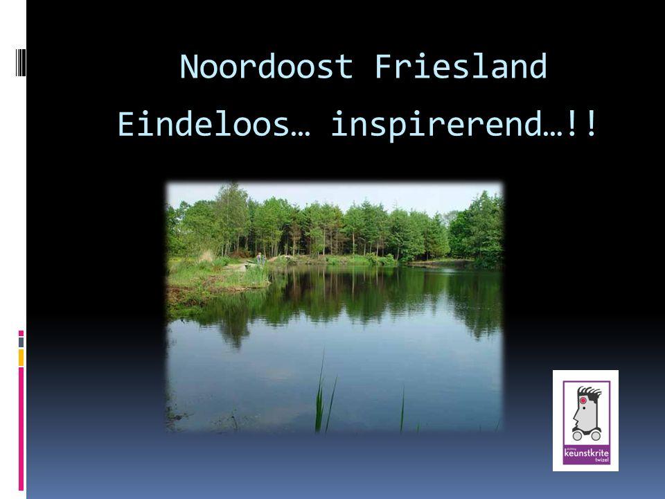 Eindeloos… inspirerend…!! Noordoost Friesland