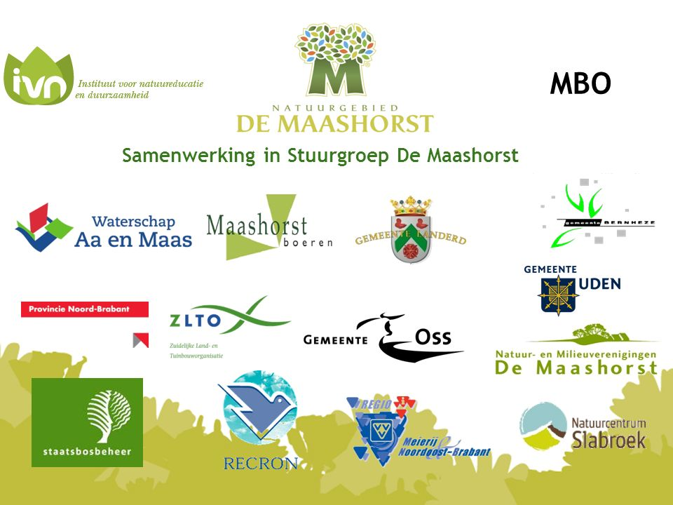 Samenwerking in Stuurgroep De Maashorst MBO