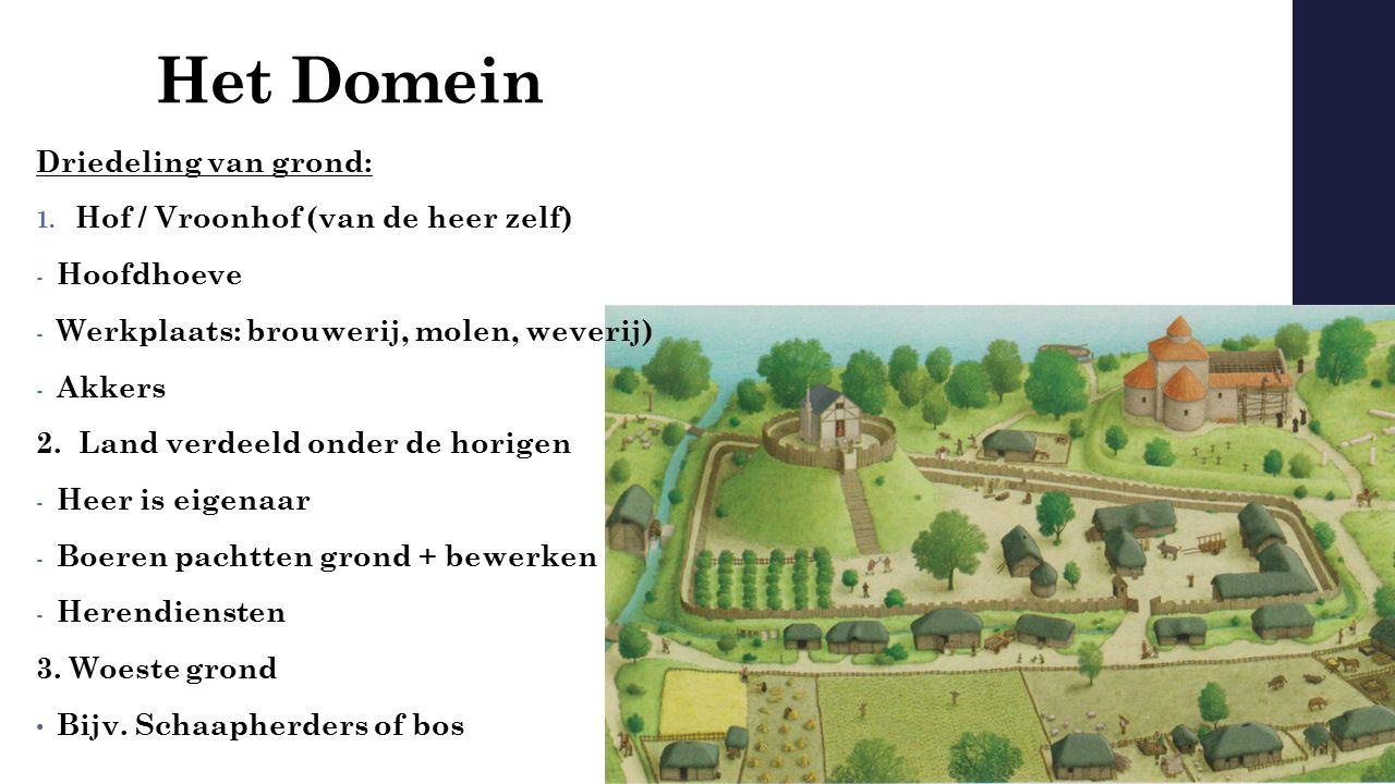 Het Domein Driedeling van grond: 1. Hof / Vroonhof (van de heer zelf) - Hoofdhoeve - Werkplaats: brouwerij, molen, weverij) - Akkers 2. Land verdeeld
