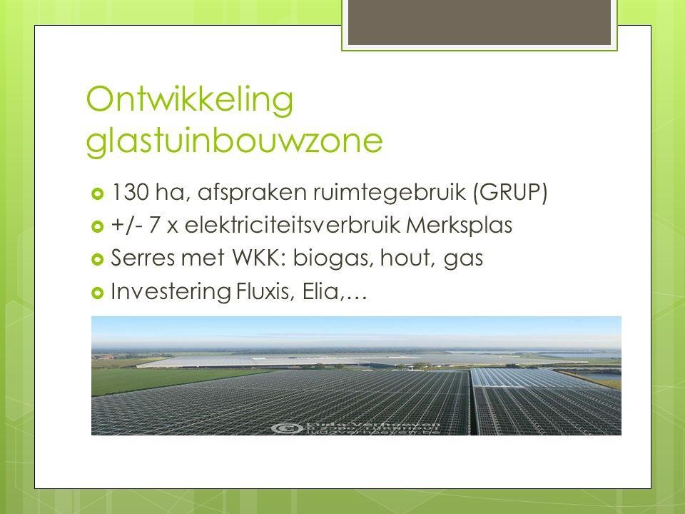 Ontwikkeling glastuinbouwzone  130 ha, afspraken ruimtegebruik (GRUP)  +/- 7 x elektriciteitsverbruik Merksplas  Serres met WKK: biogas, hout, gas