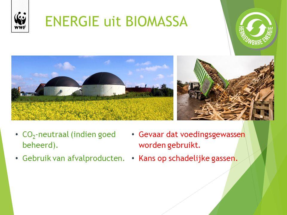 CO 2 -neutraal (indien goed beheerd).Gebruik van afvalproducten.