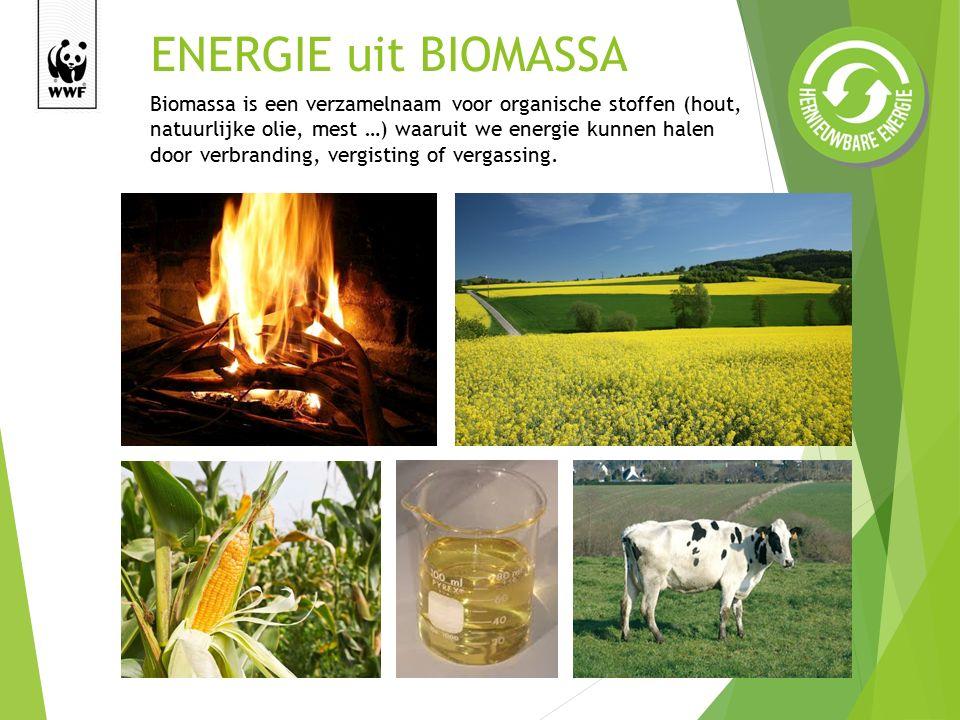 ENERGIE uit BIOMASSA Biomassa is een verzamelnaam voor organische stoffen (hout, natuurlijke olie, mest …) waaruit we energie kunnen halen door verbranding, vergisting of vergassing.