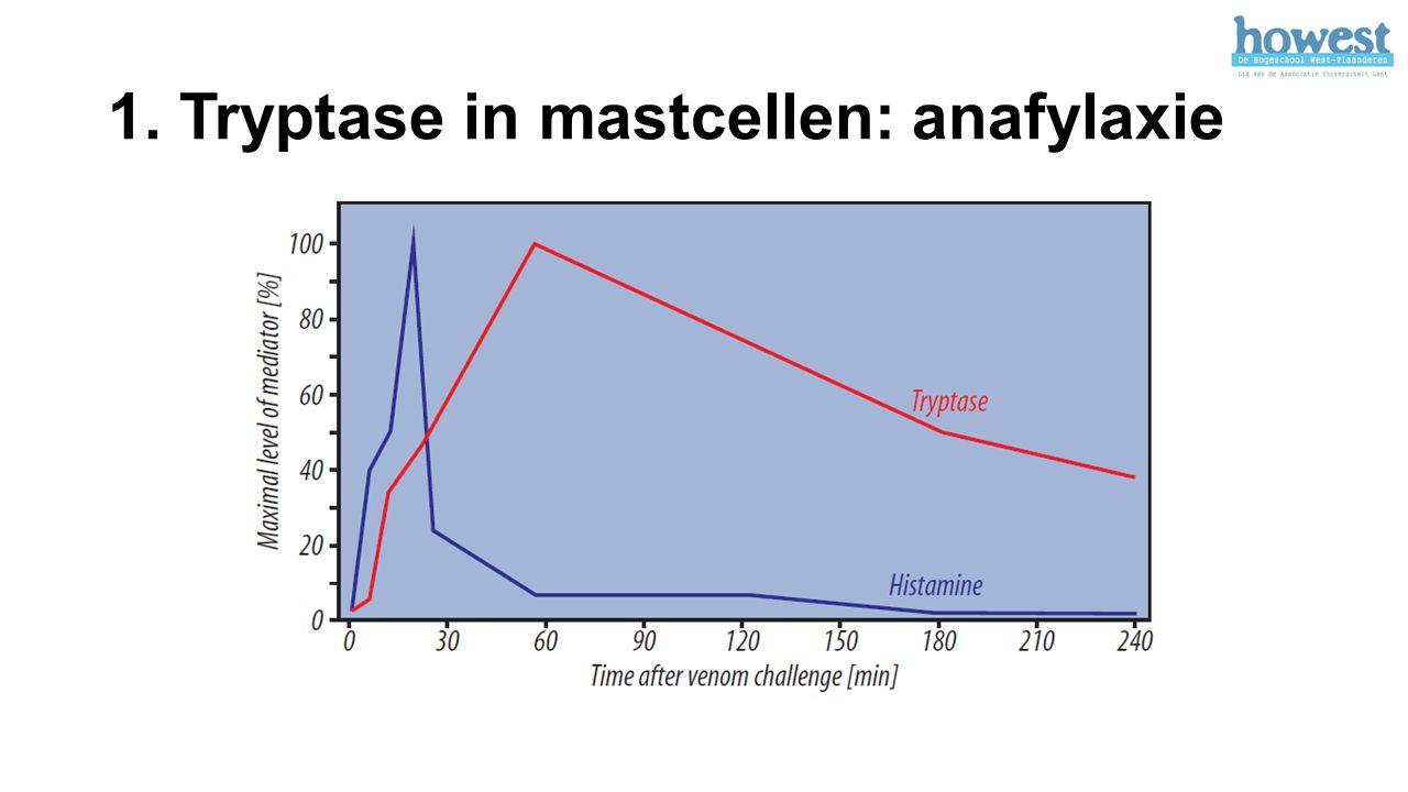 1. Tryptase in mastcellen: anafylaxie
