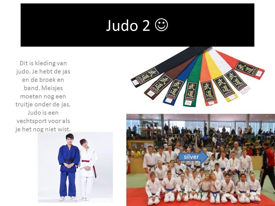 Je hebt bij judo allerlei kleuren banden.