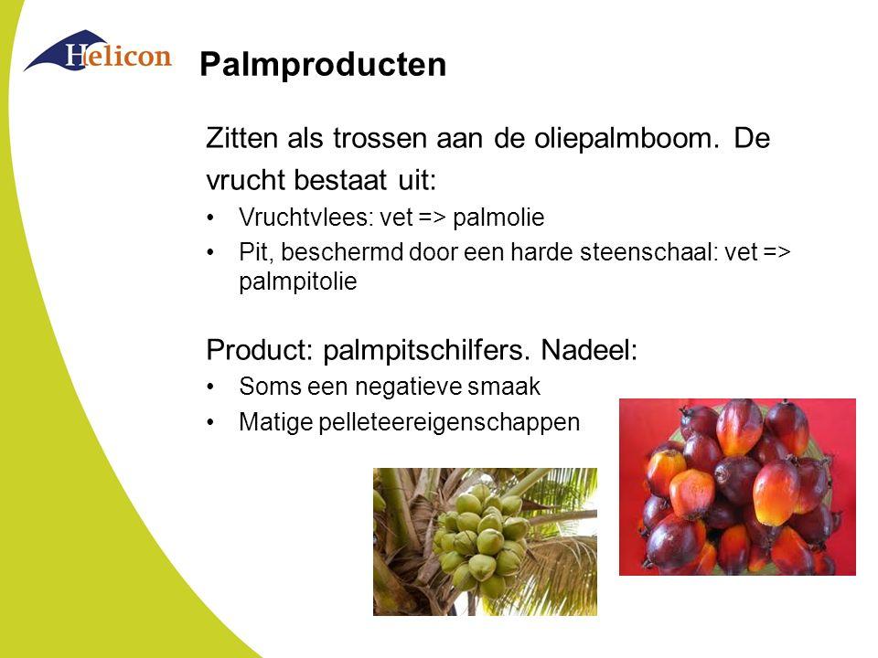 Palmproducten Zitten als trossen aan de oliepalmboom. De vrucht bestaat uit: Vruchtvlees: vet => palmolie Pit, beschermd door een harde steenschaal: v