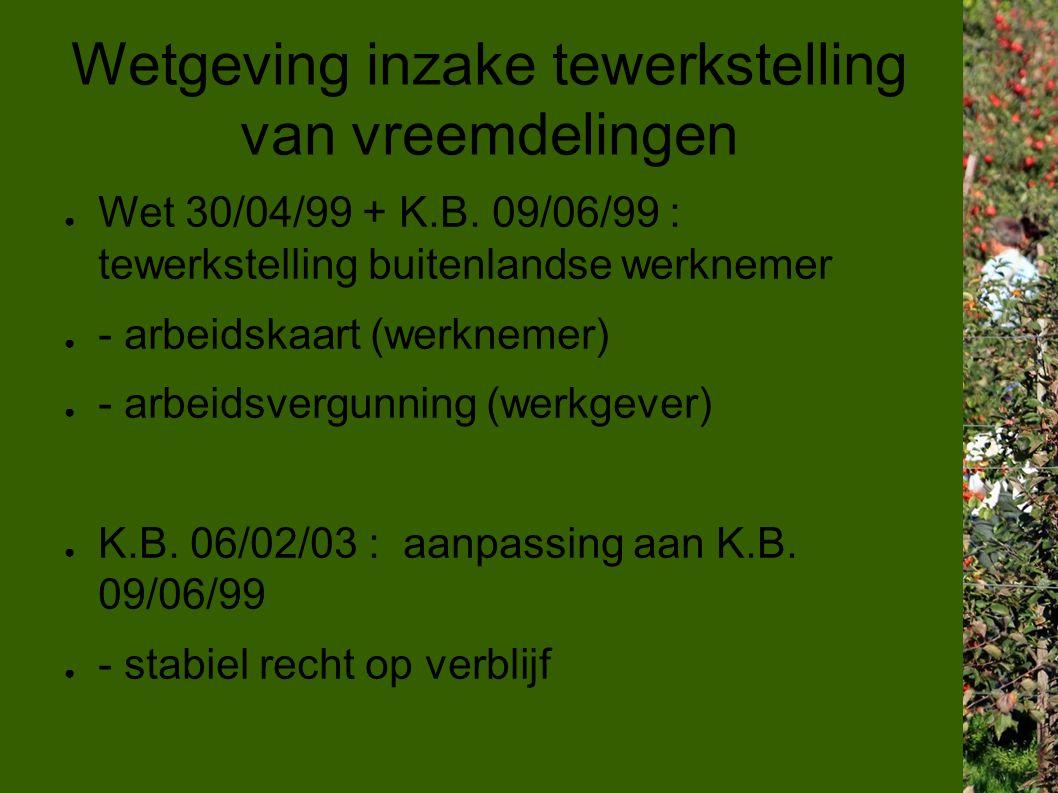 Wetgeving inzake tewerkstelling van vreemdelingen ● Wet 30/04/99 + K.B.