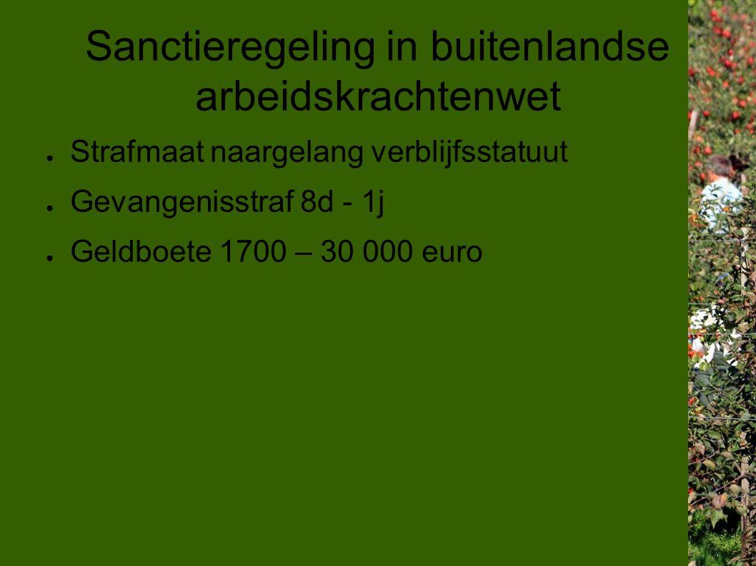 Sanctieregeling in buitenlandse arbeidskrachtenwet ● Strafmaat naargelang verblijfsstatuut ● Gevangenisstraf 8d - 1j ● Geldboete 1700 – 30 000 euro
