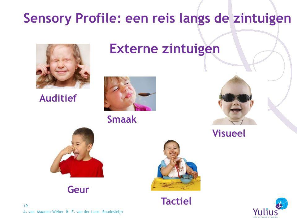 Sensory Profile: een reis langs de zintuigen 19 Auditief Visueel Smaak Geur Tactiel Externe zintuigen A.
