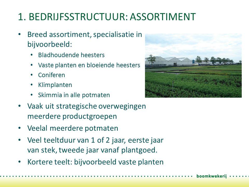 1. BEDRIJFSSTRUCTUUR: ASSORTIMENT Breed assortiment, specialisatie in bijvoorbeeld: Bladhoudende heesters Vaste planten en bloeiende heesters Conifere