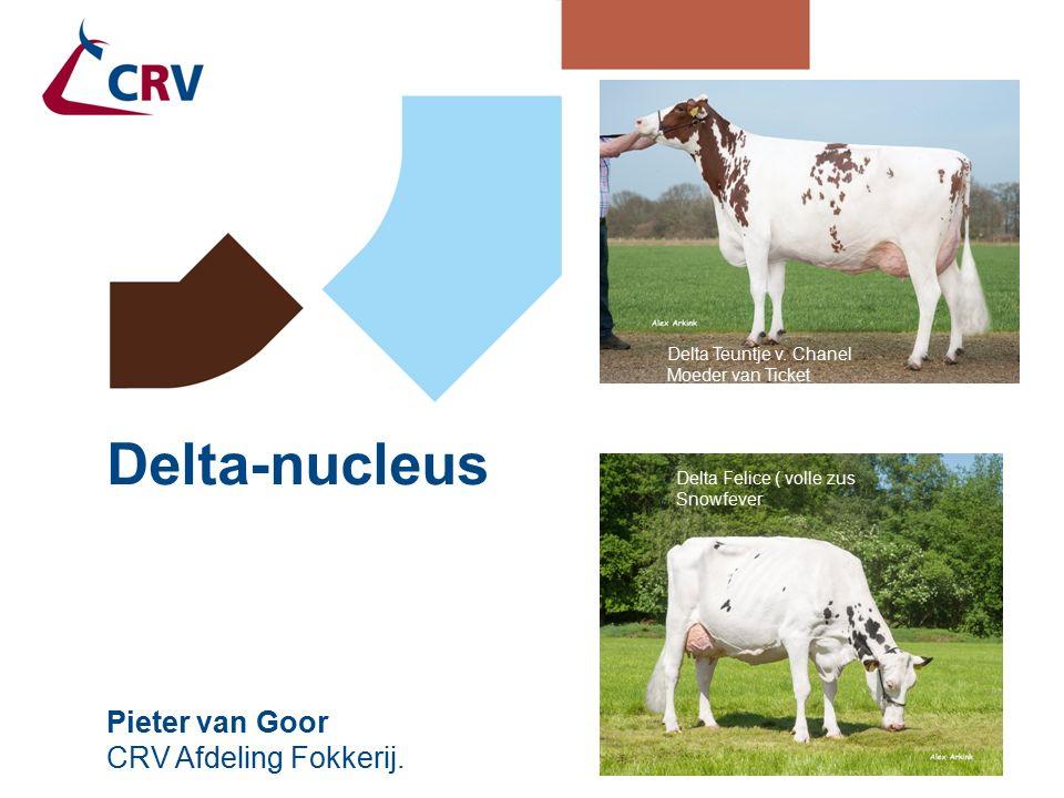 Delta Riant VG 87 Delta Bookem Danno Delta-nucleus Pieter van Goor CRV Afdeling Fokkerij. Delta Sissy VG 89 Delta Riant VG 87 Delta Felice ( volle zus