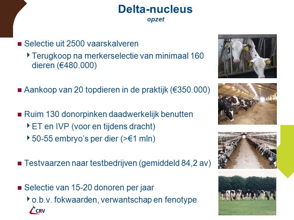 Delta-nucleus opzet  Selectie uit 2500 vaarskalveren  Terugkoop na merkerselectie van minimaal 160 dieren (€480.000)  Aankoop van 20 topdieren in de praktijk (€350.000)  Ruim 130 donorpinken daadwerkelijk benutten  ET en IVP (voor en tijdens dracht)  50-55 embryo's per dier (>€1 mln)  Testvaarzen naar testbedrijven (gemiddeld 84,2 av)  Selectie van 15-20 donoren per jaar  o.b.v.