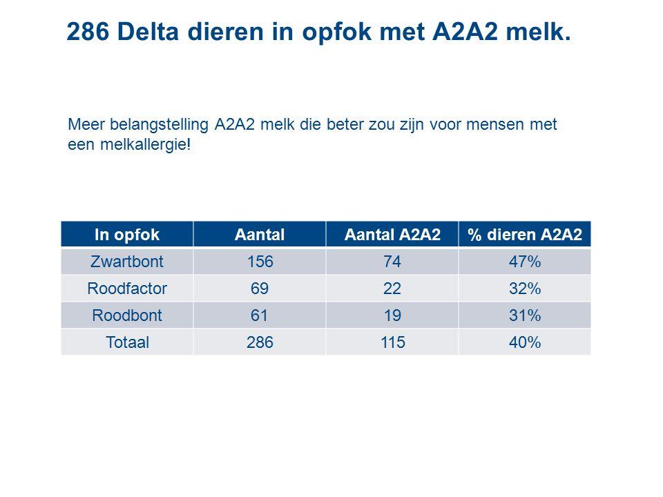 286 Delta dieren in opfok met A2A2 melk.