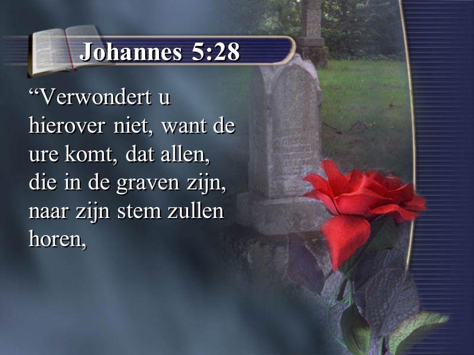 """Johannes 5:28 """"Verwondert u hierover niet, want de ure komt, dat allen, die in de graven zijn, naar zijn stem zullen horen,"""